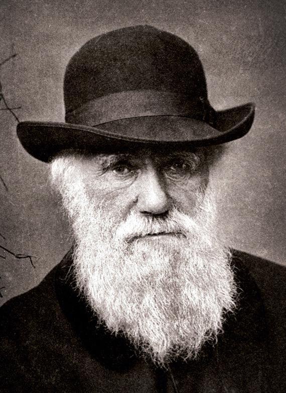 Charles Darwin in 1881.