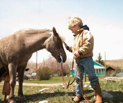A child petting a horse. Click image to expand.