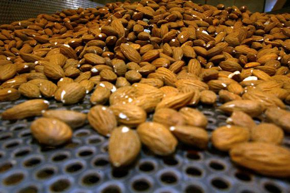 Raw almonds are shown on a roasting tray in June 2007 in Madera, Calif.