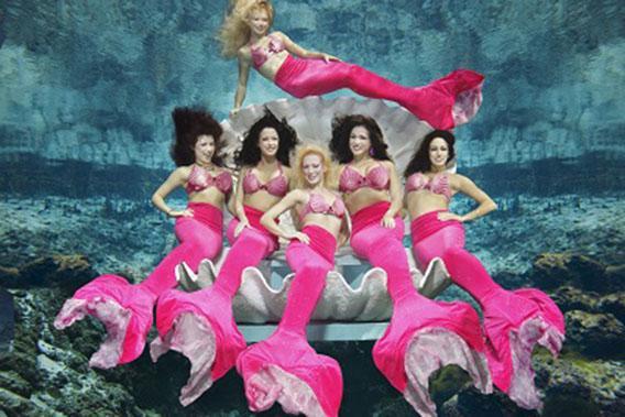 The Mermaids at Weeki Wachee State Park in Florida.