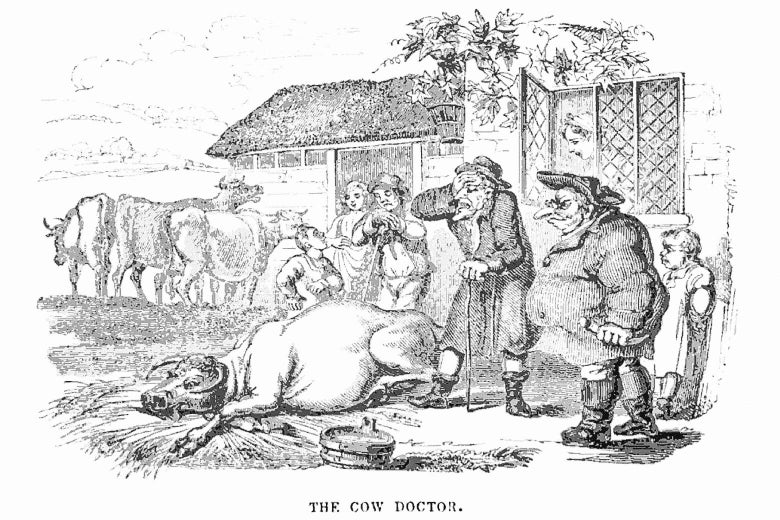 A 19th-century engraving of a silly-looking cow, collapsed on the ground in front of a doctor and several onlookers.