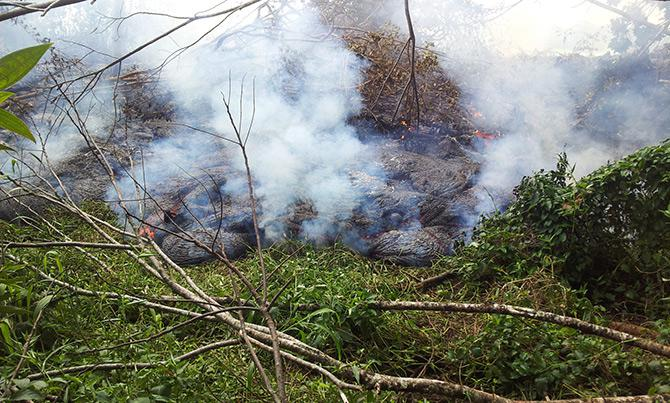 As it advances, the lava crackles and pops as it burns vegetation.
