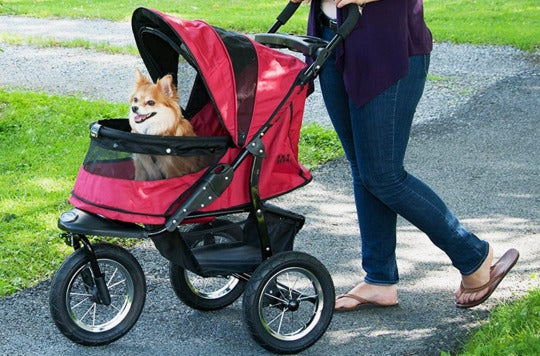 Person rolling a dog in the Pet Gear No-Zip Jogger Pet Stroller.