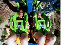Roller coaster. Click image to expand.