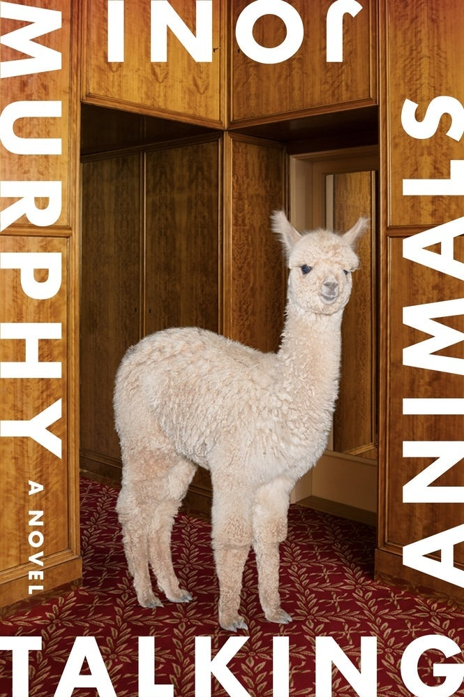 A book cover depicts a fluffy white alpaca. Words surround the border: Talking Animals: A Novel. Joni Murphy.