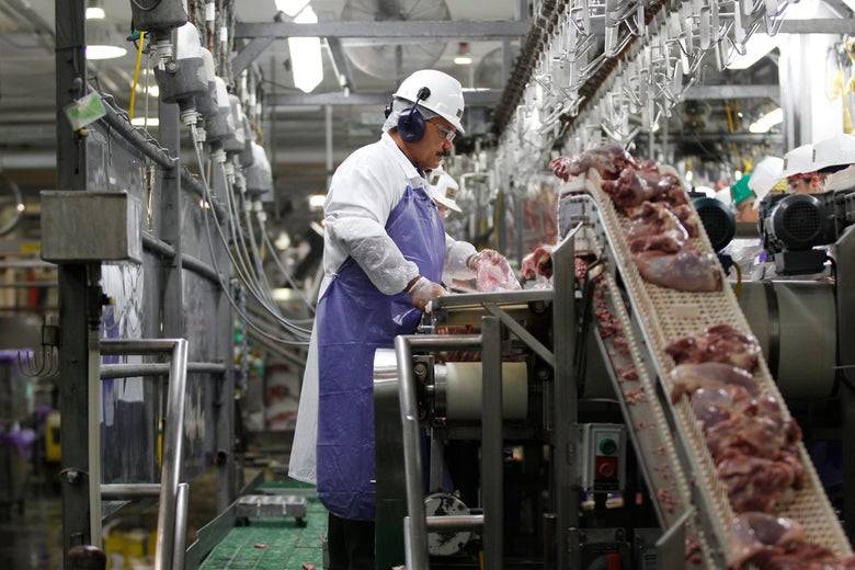 A worker processes turkeys at a processing plant in West Liberty, Iowa.