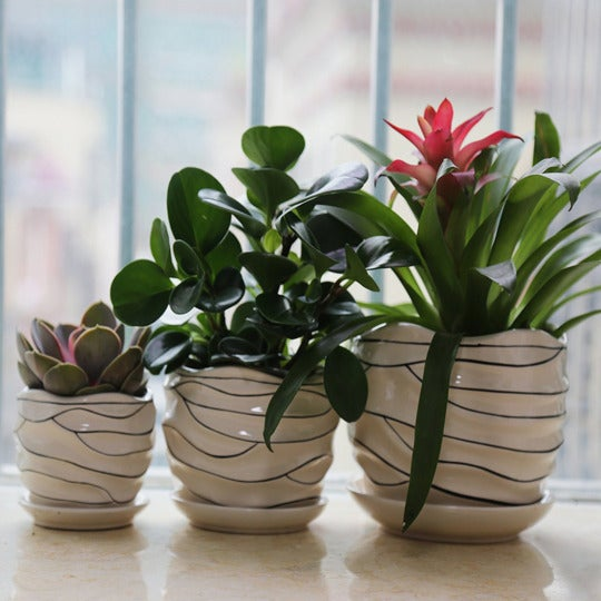 LoveBoutique Ceramic Flower Plant Pot, Size 4-inch, 6-inch and 7-inch — Modern (Set of 3).