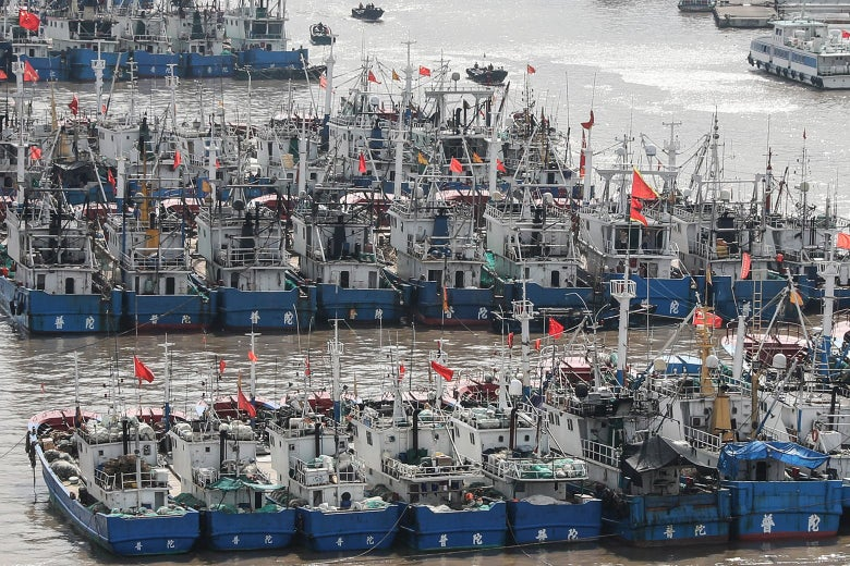 Many blue and white boats side by side with Chinese flags.