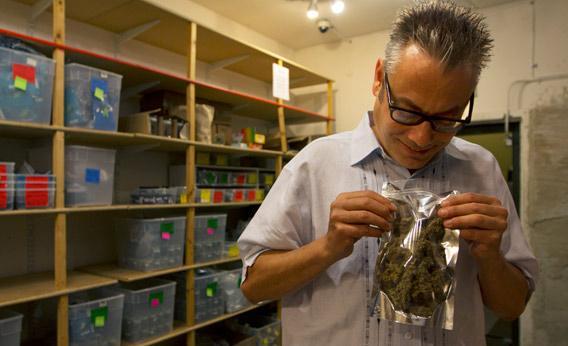 Andrew DeAngelo in Weed Wars