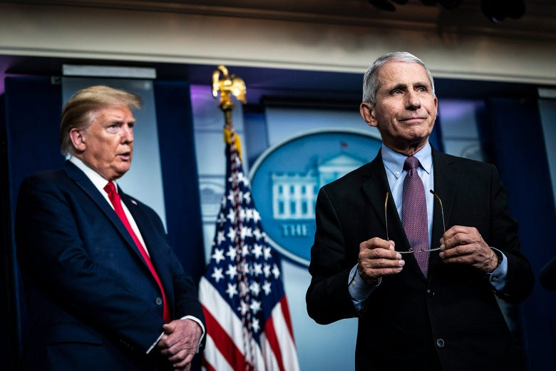 Trump stands back and to the side as Fauci stands forward holding his glasses.