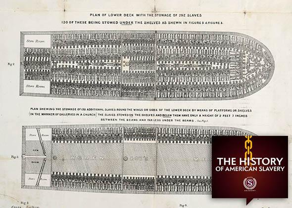 """Stowage of the British slave ship """"Brookes"""" under the regulated"""