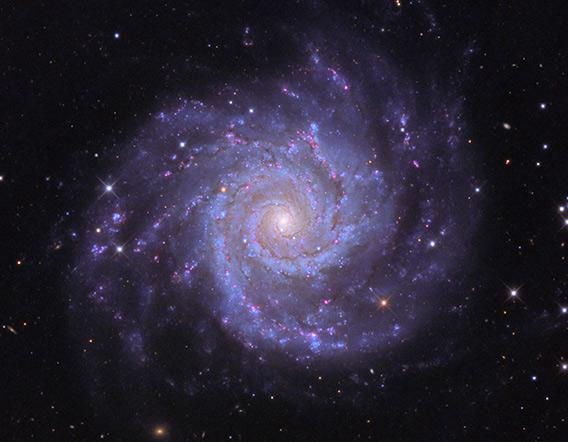 The nearby spiral galaxy M74
