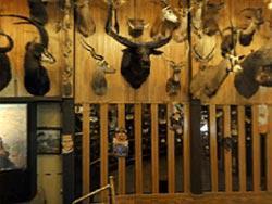 Safari Club, Thermopolis