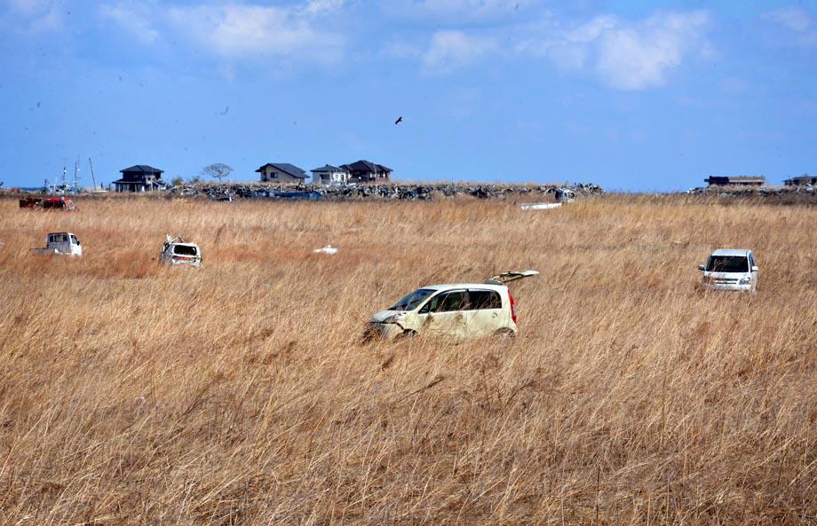 Wrecked vehicles remain in a field of reeds in Namie, two years after the March 11, 2011 tsunami and earthquake.