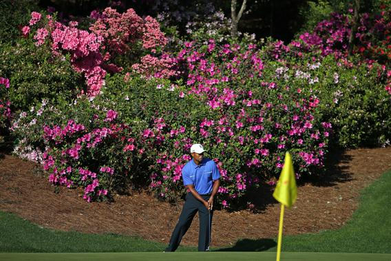 Tiger Woods chips onto a green during a practice at the 2013 Masters Tournament at Augusta National Golf Club on April 10, 2013.