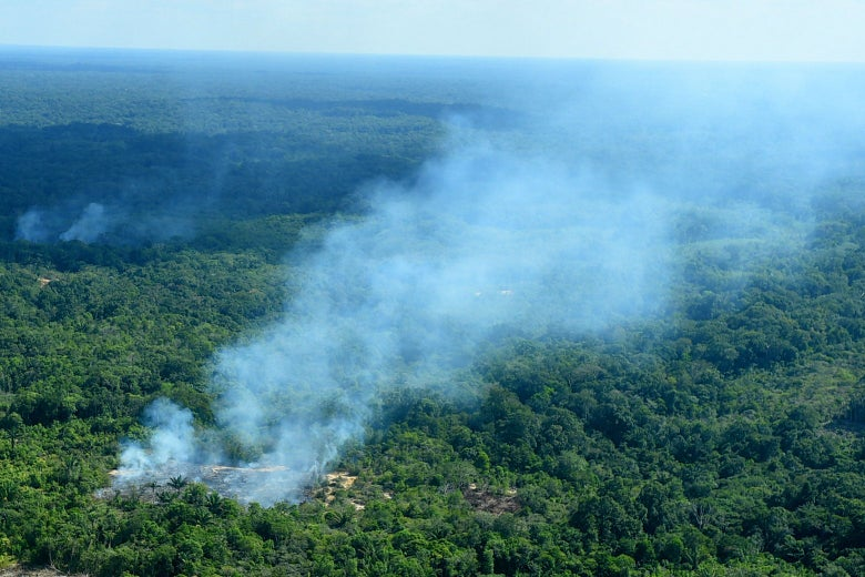 21 August 2019, Brazil, Sao Gabriel da Cachoeira: Smoke rises from the forest in a region of the Amazon near the Colombian border.