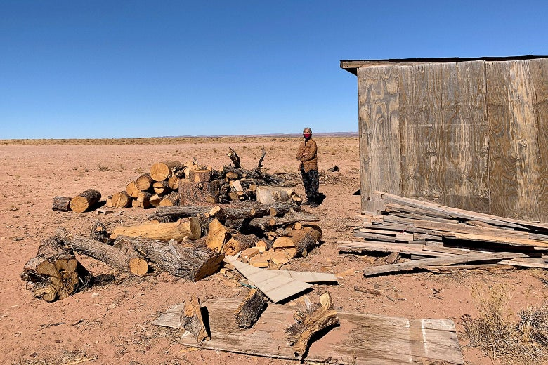 A Navajo woman standing in front of a large pile of firewood in a dry landscape
