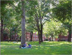Harvard yard. Click image to expand.