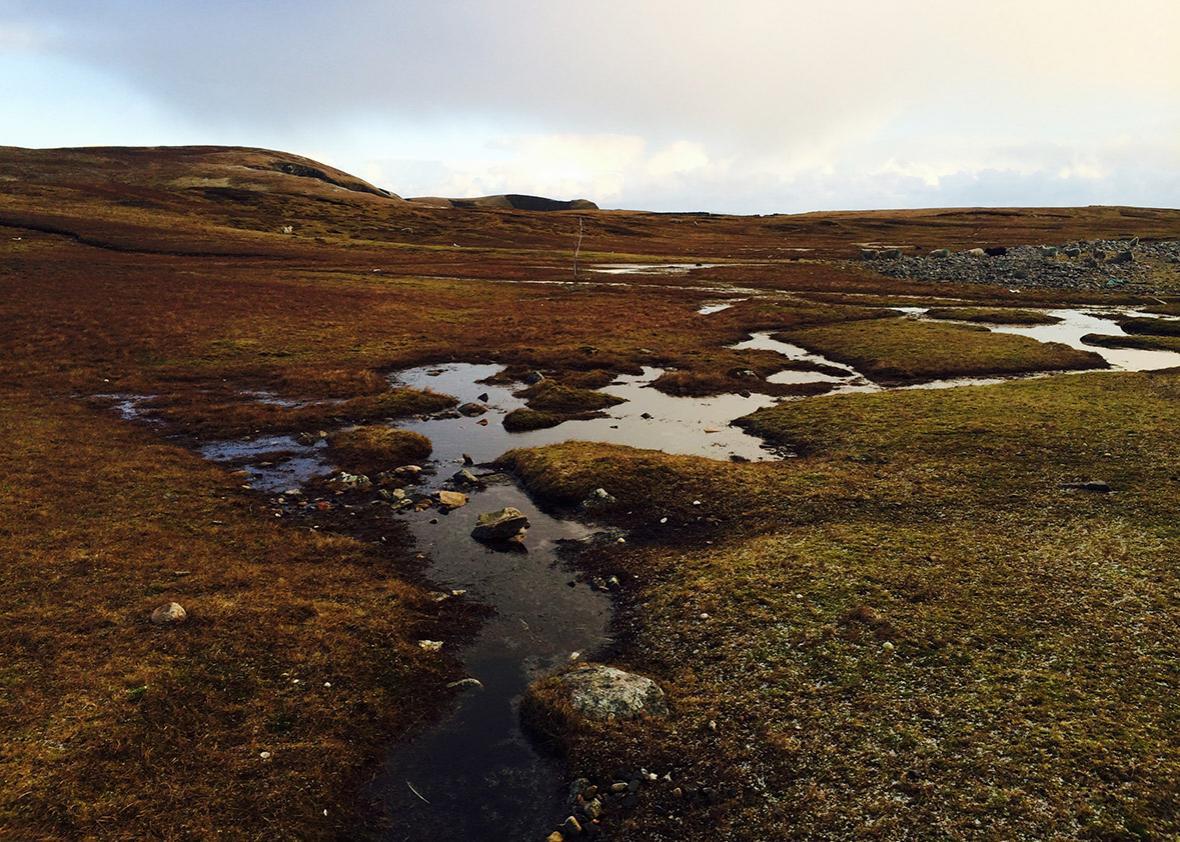 The landscape of rural Shetland.