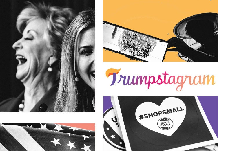 "Clockwise from top left, Linda McMahon laughing, bees, Trumpstagram logo, a piece of paper that says ""Shop Small,"" and an American flag."