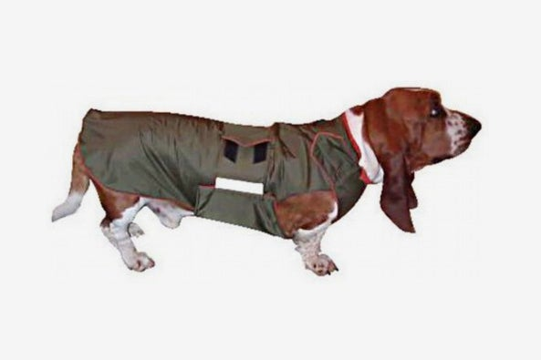 Basset Hound Dog Raincoat