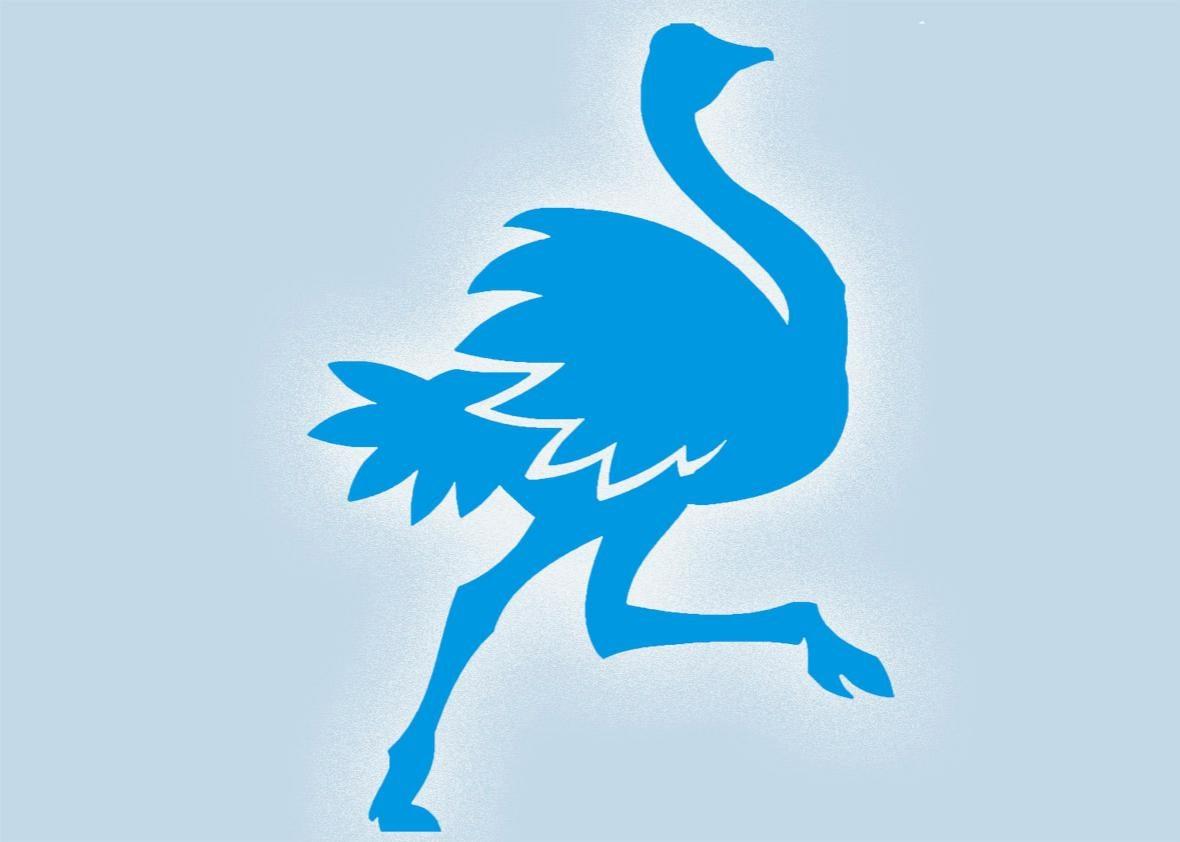 ostrich twitter.