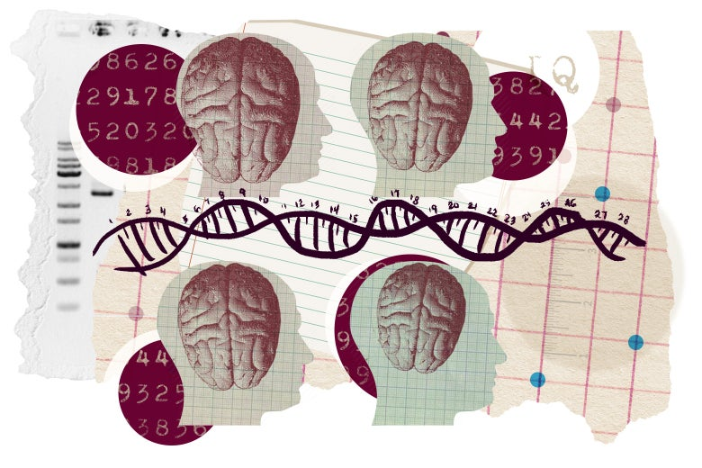 Photo illustration: human silhouettes with visible brains, cutouts of binary code and DNA strings.