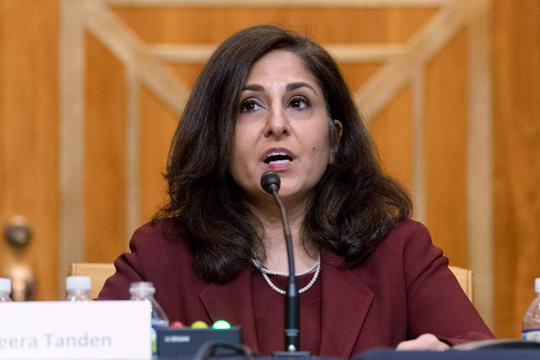 Neera Tanden, nominee for Director of the Office of Management and Budget, testifies on Capitol Hill in Washington, DC on February 10, 2021.