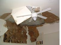 The sodden ceiling         Click on image to expand