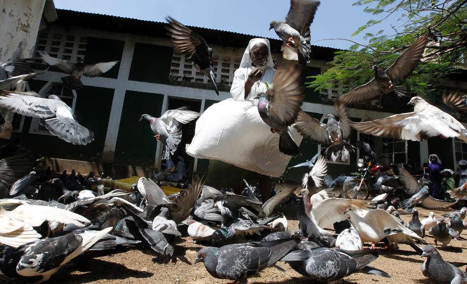 A member of the faithful feeds pigeons at the St. Peter's Legio Maria Manyatta church in the western town of Kisumu, 218 miles from the capital Nairobi, Kenya, on March 10, 2013.
