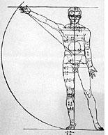 Dürer's proportion of man