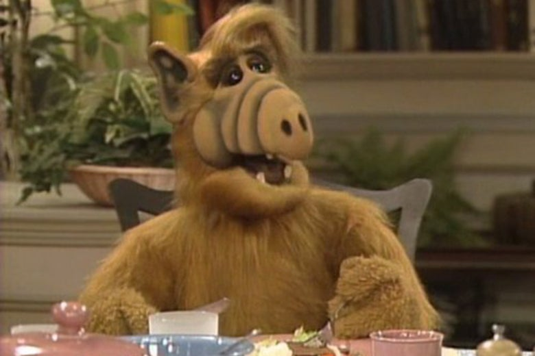 ALF sitting at a table.