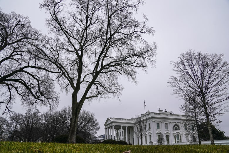 Side view of the White House surrounded by barren trees on a gray, cloudy day