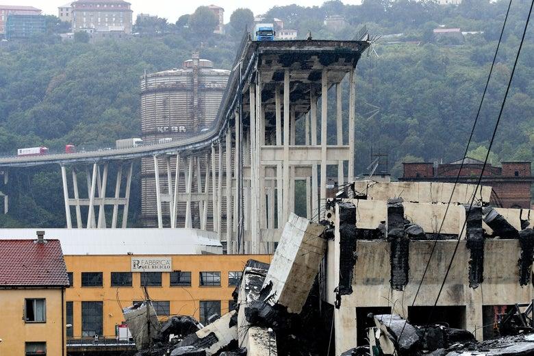 Genoa bridge collapse kills several in Italy