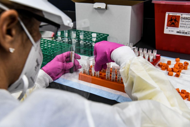A lab technician sorts blood samples inside a lab for a COVID-19 vaccine study.