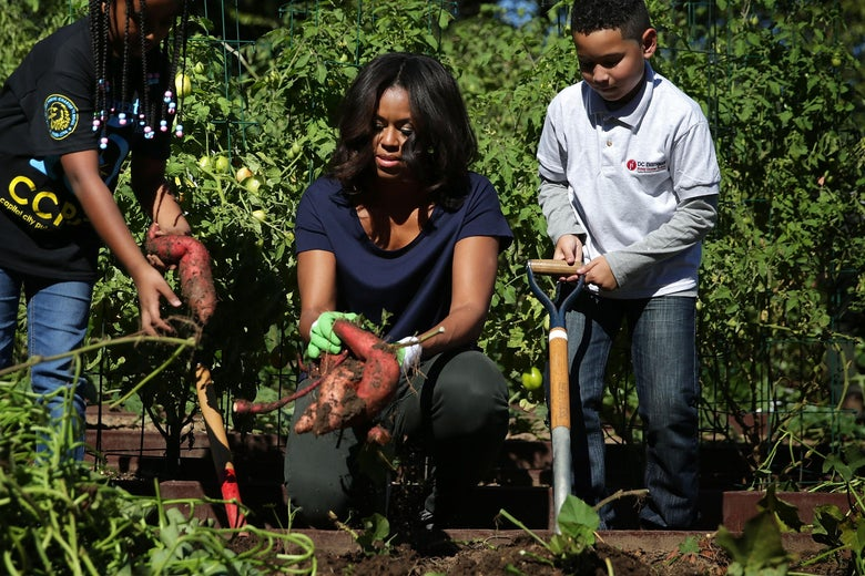 Michelle Obama participates with local students in the annual fall harvest of the White House Kitchen Garden on Oct. 6, 2015.