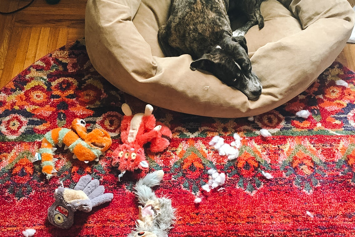 A pit bull on a dog bed with plush toys near him