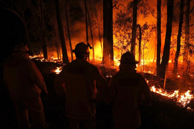 In a forest ablaze, three firefighters stand with their hands on their hips, watching the flames.