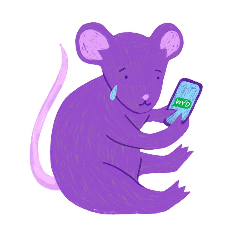 A purple rat cries while texting.