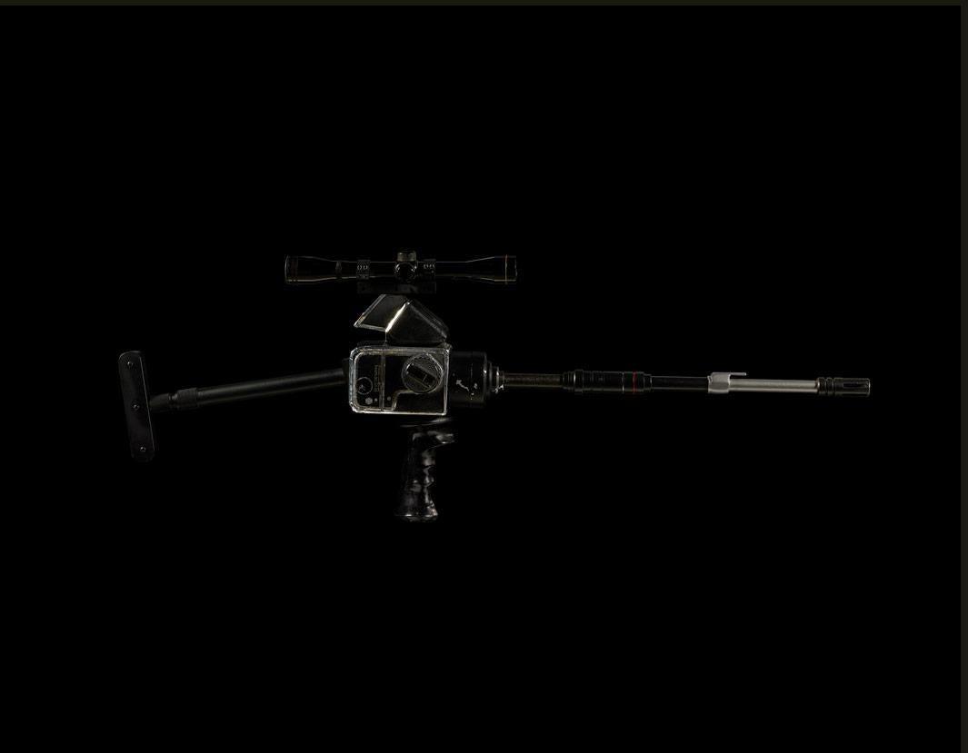 """""""B.45 Hasselblad Camera Signature Gun, 1989"""", Birds of the West Indies, 2013"""