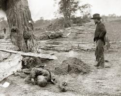 dead on battlefield