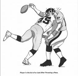 Player saftey handbook illustration. Click image to expand.