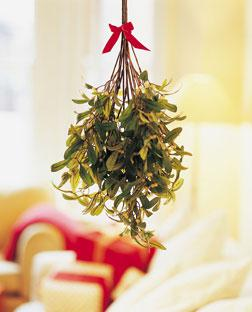 mistletoe - Mistletoe Christmas Decoration