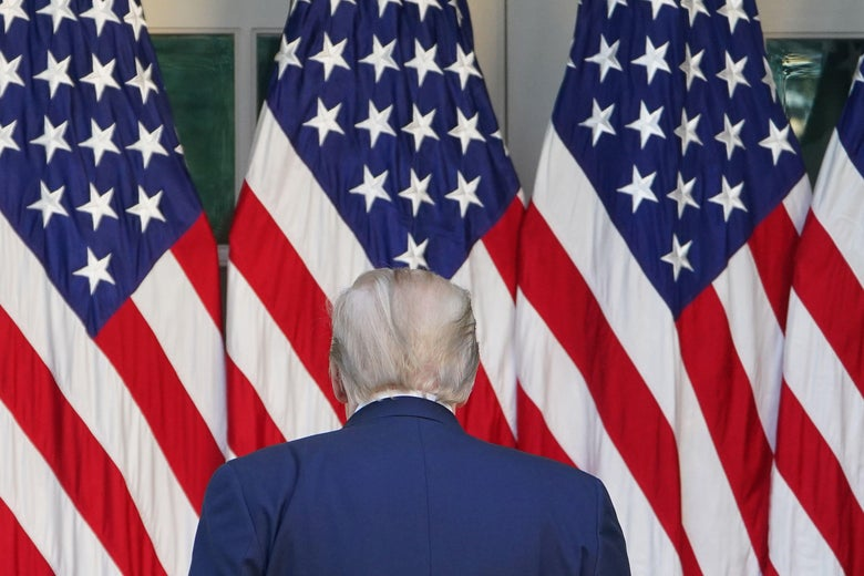 President Donald Trump's back is seen as he faces some American flags.