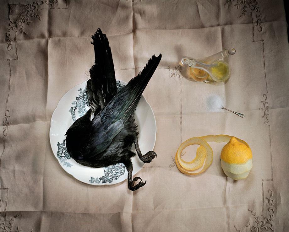 Marian Drew Still Life / Australiana (2003-2009) Crow with salt.