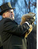 Punxsutawney Phil: a fuzzy oracle