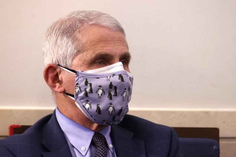 Dr. Anthony Fauci wears a protective mask during a White House Coronavirus Task Force press briefing in the James Brady Press Briefing Room at the White House on November 19, 2020 in Washington, D.C.