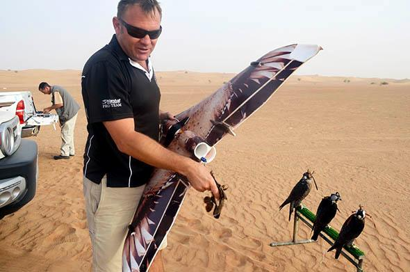 falconry in dubai.