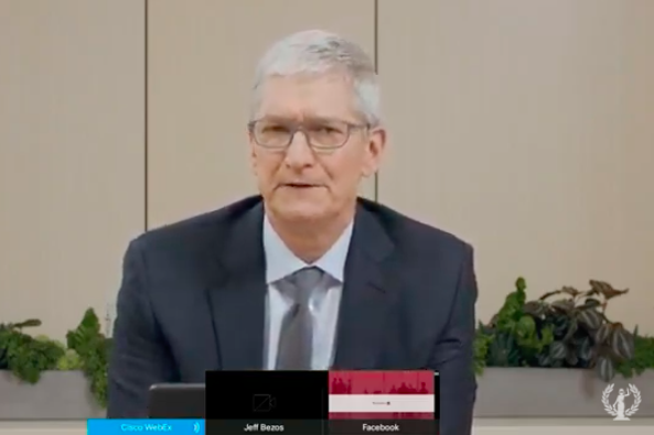Screenshot of Tim Cook testifying remotely.