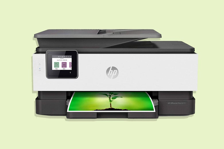 A sleek HP printer prints out a color photograph of a flower.